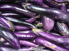 asian eggplant, solanum melongena